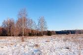 Donmuş günde rus peyzaj — Stok fotoğraf