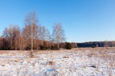 Russian lanscape in frozen day — Stock Photo