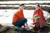Family covers soil a polyethylene film — Stock Photo