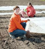 Family warms the soil with polyethylene — Stock Photo