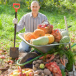 Man with  harvest in garden — Stockfoto
