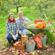couple with  harvested vegetables   — Stock Photo
