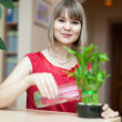 Young woman with lucky bamboo — Stock Photo #27492499