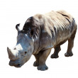 Stock Photo: White rhinoceros. Isolated over white background
