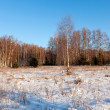 Lanscape in frozen day — Stock Photo