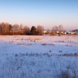 Wintry landscape with village — Stock Photo #27494171