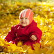 Stock Photo: Happy toddler in autumn park