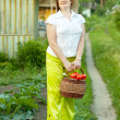 Stock Photo: woman with vegetables harvest