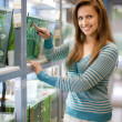 Stock Photo: Womchooses fish in tank