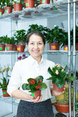Woman in flower shop with kalanchoe — Stock Photo