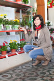Kadın çiçek store — Stok fotoğraf