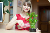 Young woman with lucky bamboo — Stock Photo