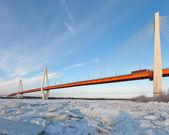 Kabelový most v zimě — Stock fotografie