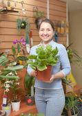Szczęśliwa kobieta kwiatowy sklep — Zdjęcie stockowe