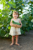2 years girl picking cucumbers — Stockfoto