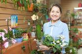 Kobieta kwiaciarnia z phalaenopsis — Zdjęcie stockowe