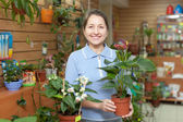 Female florist with anthurium flower — Stock Photo