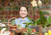 Mujer en el almacén para los jardineros — Foto de Stock