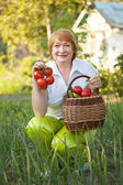 Woman with basket of harvested vegetables — Stock Photo