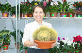 Woman in flower shop with cactus — Stock Photo