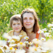 Stock Photo: Mother with daughter in camomile plant