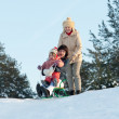 Two women with child sliding on sleds — Stock Photo #28693613