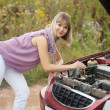 Womtrying to fix car — Stock Photo #28694103