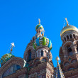 Domes of Church of the Savior on Spilled Blood — Stock Photo #28694451