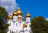 Domes of Assumption cathedral at Yaroslavl — Zdjęcie stockowe