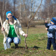 Woman with her son planting tree — Stock Photo