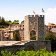 Medieval gate in old town. Besalu — Stock Photo