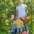 Stock Photo: Happy family with apples in garden