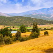 Stockfoto: Farms and fields in valley