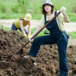 Stock Photo: Farmers works with manure