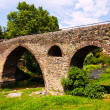 Постер, плакат: Medieval bridge in Sant Joan les Fonts