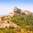 General view of Castle of Cardona. Catalonia — Stock Photo