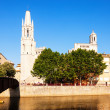 Day view of Girona - Collegiate Church of Sant Feliu — Stock Photo