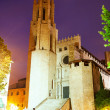Night view of  Collegiate Church of Sant Feliu — Stock Photo