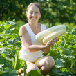 Mature woman is picking vegetable marrow   — Stock Photo