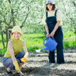 Stock Photo: Two women sows seeds
