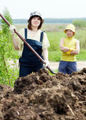 Farmers works with manure at field — Stock Photo