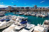 Docked yachts in Port Forum — Stock Photo