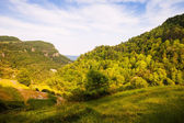 Forest mountains in Collsacabra — Stock Photo