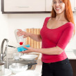 Housewife washing plates — Stockfoto