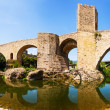Panoramic view of  old bridge over Fluvia river in Besalu — Stock Photo