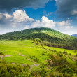 Stock Photo: Pyrenees mountains landscape
