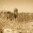 Retro photo of lookout Tower — Stock Photo