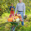 Man and woman with crop of vegetables  — Stock Photo