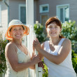 Stock Photo: Women talking near fence wicket