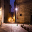 Old narrow street of european city. Girona — Stock Photo